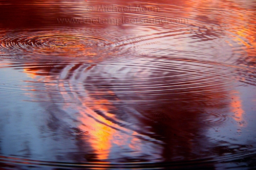 vesica-pices-ripples392web